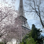 Paris-2017-03-151