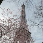 Paris-2017-03-152